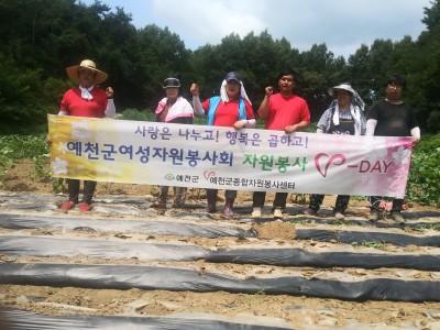 지역농가(장애인가정) 일손돕기 활동
